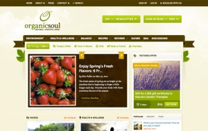 Organic Vegi Store Website Sample Web Design